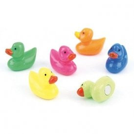 Assorted Animal Style Office Magnets - Ducks
