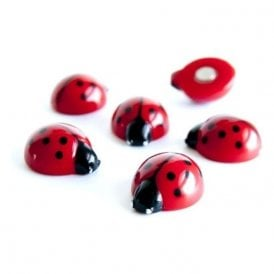 Magnets LADYBUG, Set of 6, Red