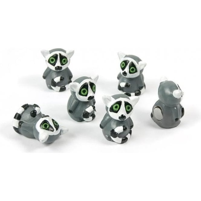Assorted Popular Shape Office Magnets - Lemur ( 1 set of 6 )