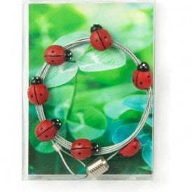 Photo Wire LADYBUG, 8 Magnets / 150 cm / Postcard