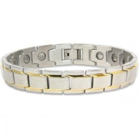 Unisex Rare Earth Magnetic Bracelet With Fold-over Clasp – Pegasus